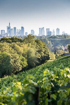 Frankfurt & Rhein-Main Natur