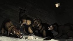 Cave Rats