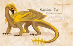 Golden Macetail