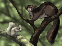 Kellaborn Squirrels