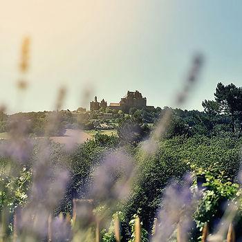 Citadelle de Biron