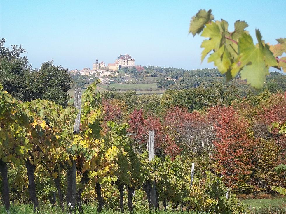 Vignoble de Biron