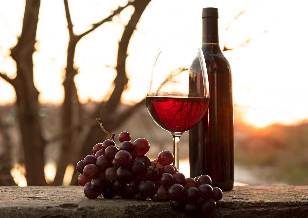 grappe-vin.jpg