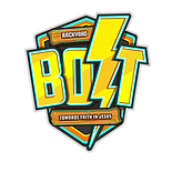 BOLT logo-no background.png