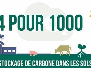 Pratiques agricoles et potentiel de stockage de carbone dans les sols en France