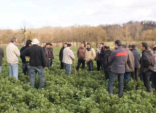 Qualité des sols : des professionnels du secteur agricole s'expriment (et redonnent globalement