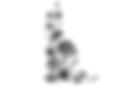 Rose Logo Google_edited.png