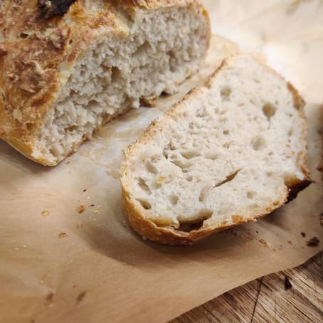 Rustic round bread, mushrooms, wine