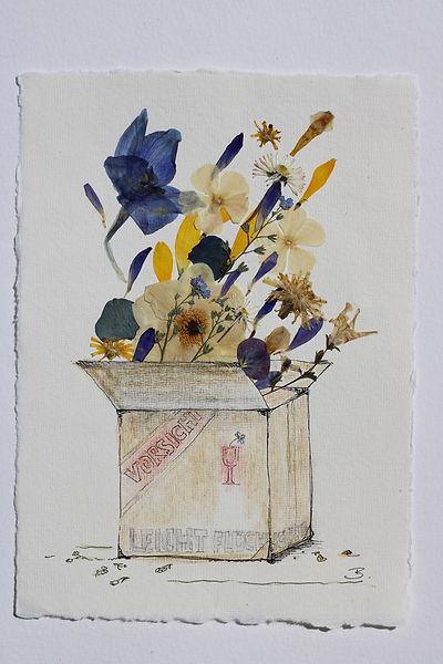 Blütenkarton.JPG