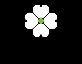 DP_logo_vertical_RGB_500px.png