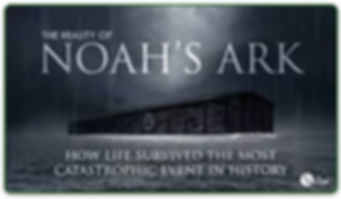 Noahs_Ark_video.png