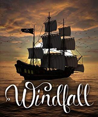 Blog Tour: Shawna Barnett's Windfall