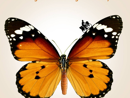 Far Sweeter Than Honey: Searching for Meaning on a Bicycle by William Spencer