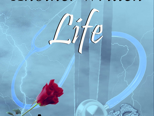 The MOD Life Epic Saga: Another Written Life
