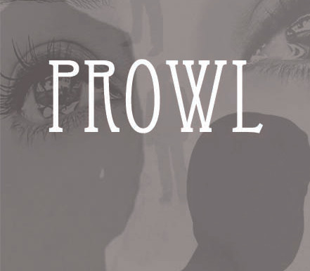 """FREE Ebook Offer: """"Prowl"""" By Amy Shannon"""