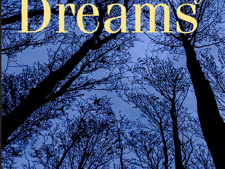 A Cauldron of Uncanny Dreams by Donald Firesmith
