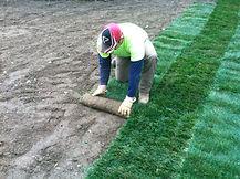 Atlanta sod installation