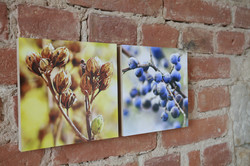 Blütenzauber Holzbilder 20x20cm