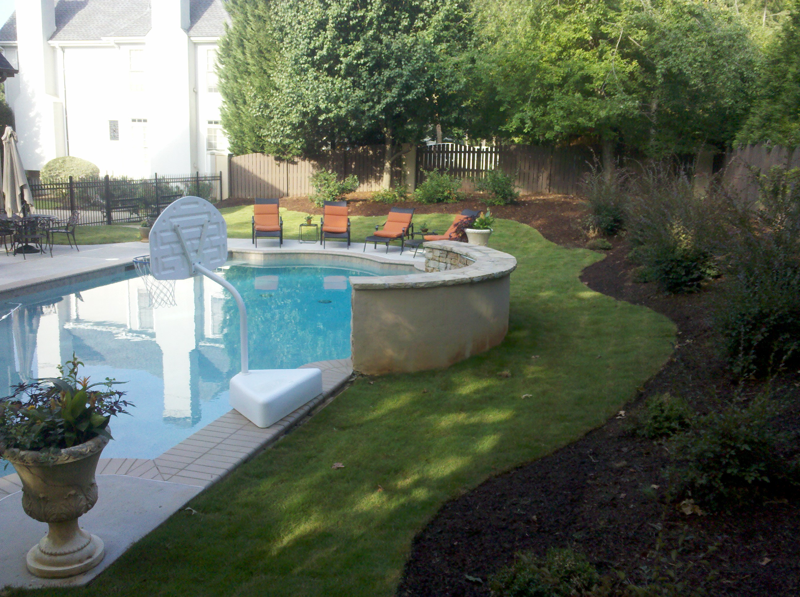Emerald Zoysia Around Pool