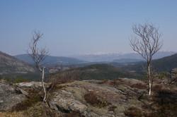 Velfjord