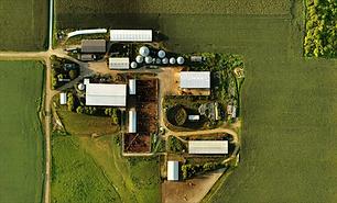 Aerial Map of Farmland Dare Farms