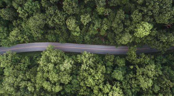 Arkansas Road