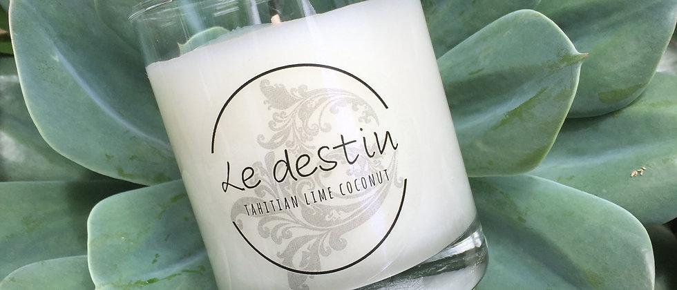 Candle Succulent