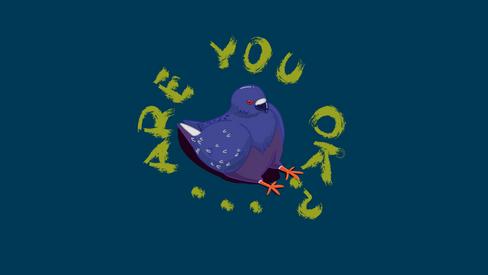 Sad Pigeon