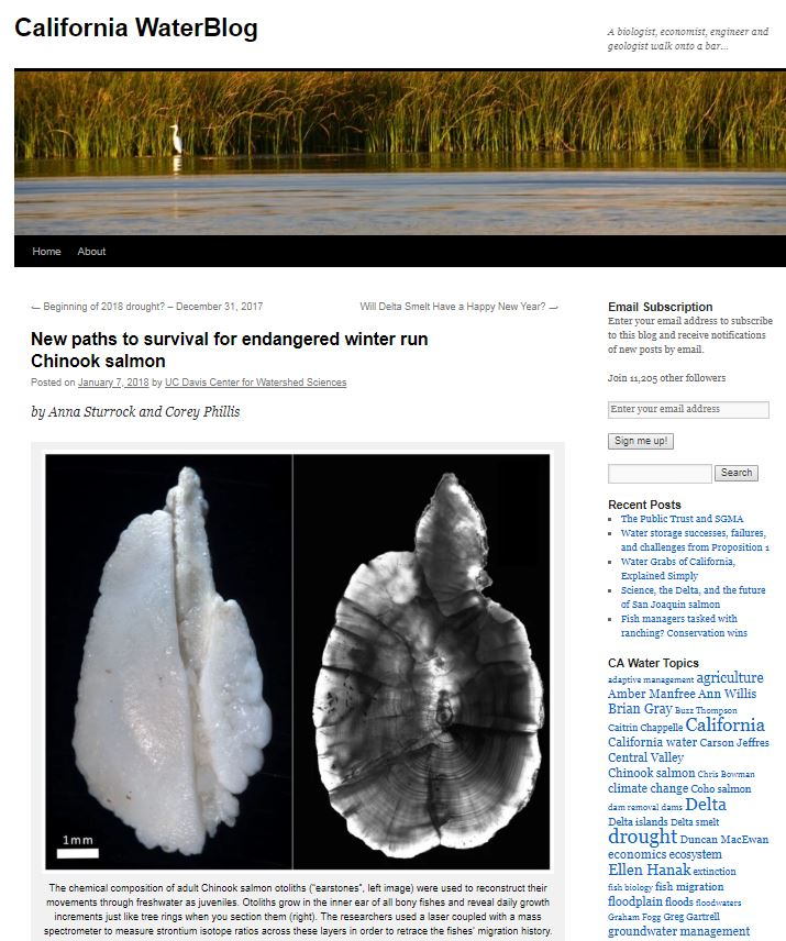 Salmon migration blog