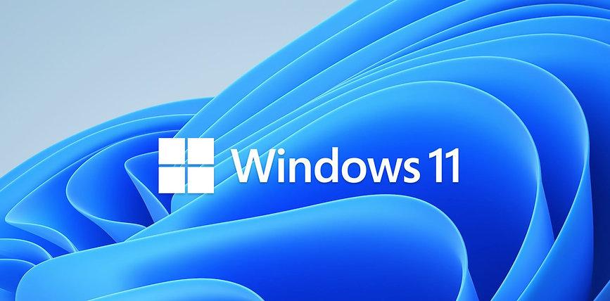 windows 11 icom.JPG