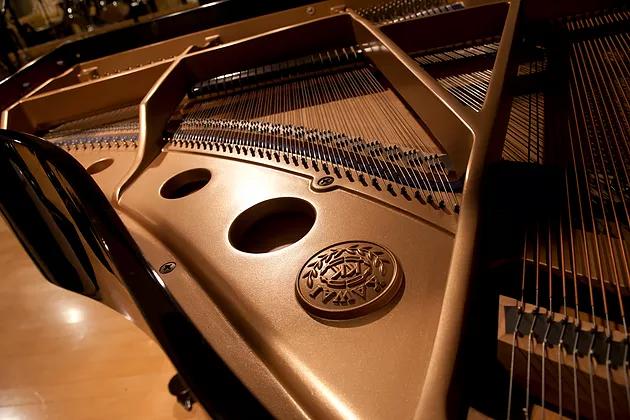 GM-1,音響板