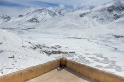 Look out, Spiti Valley