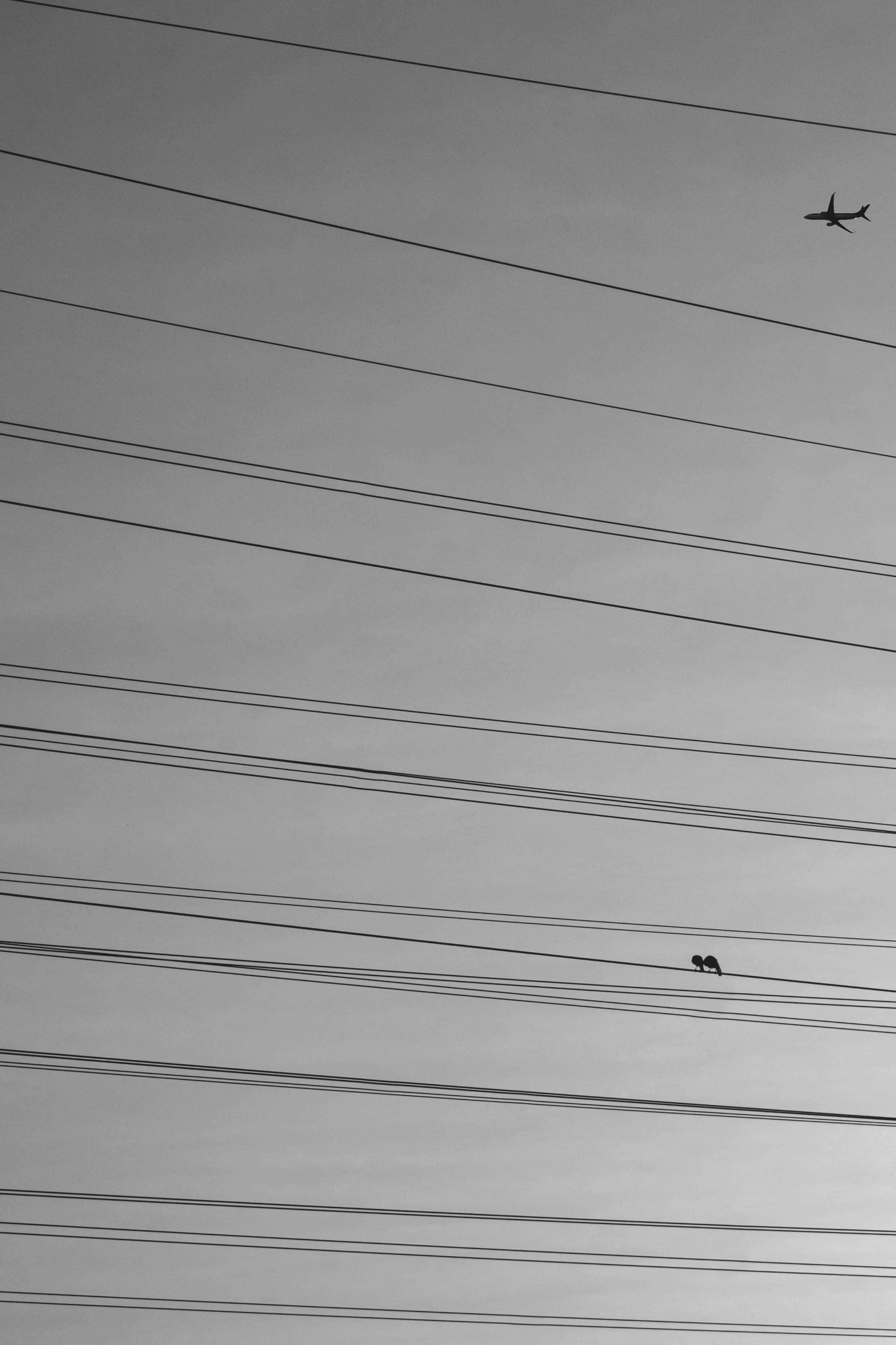 Electrocity, Electricity, Mumbai