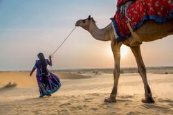 Jaisalmer Stories