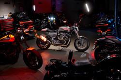 Harley Davidson Sabretooth