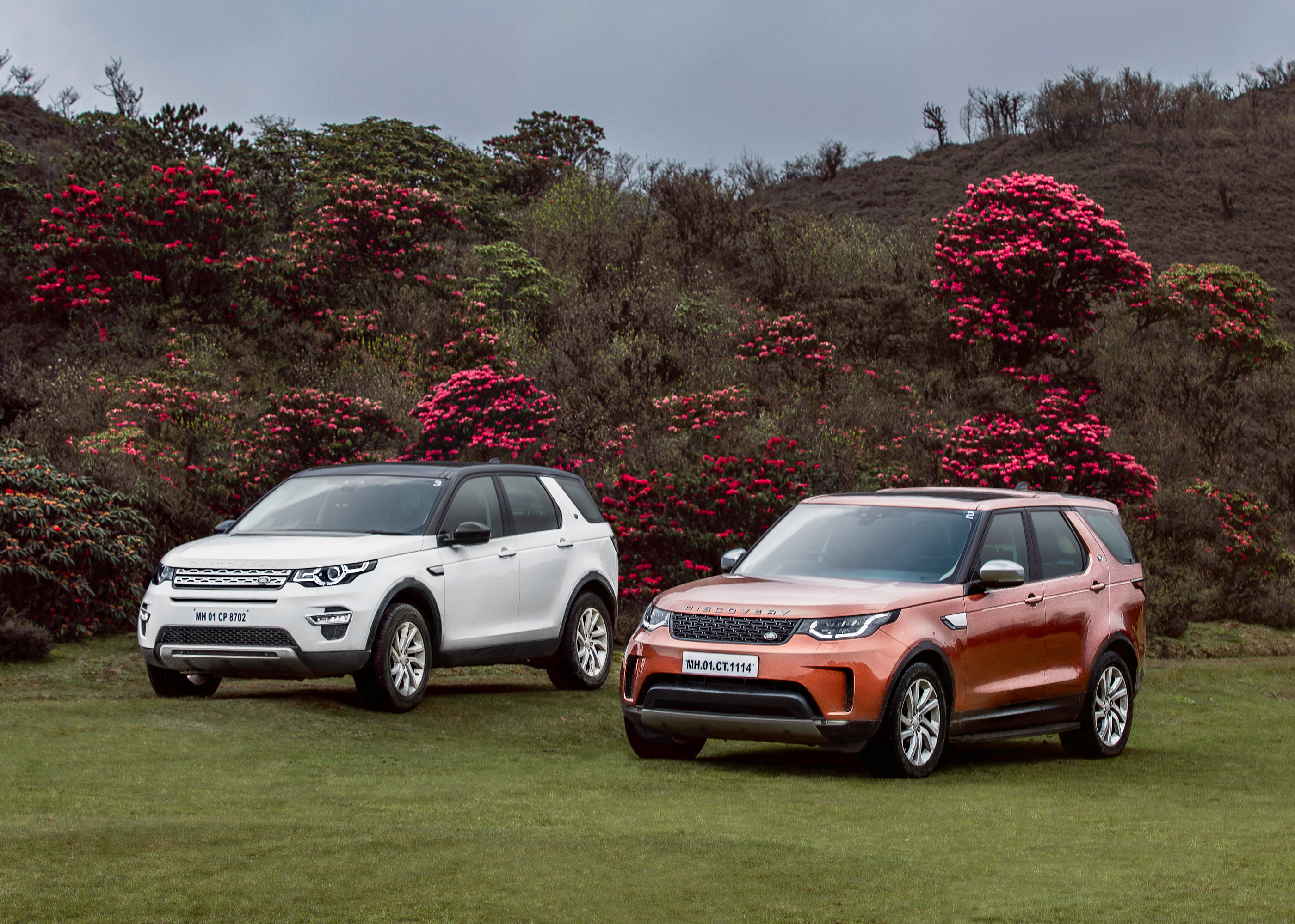 Sandakphu Discovery-and-Discovery-Sport.
