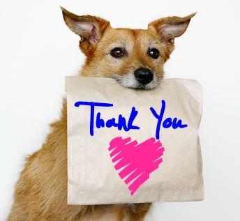 Thank You! Thank you! thank you!!