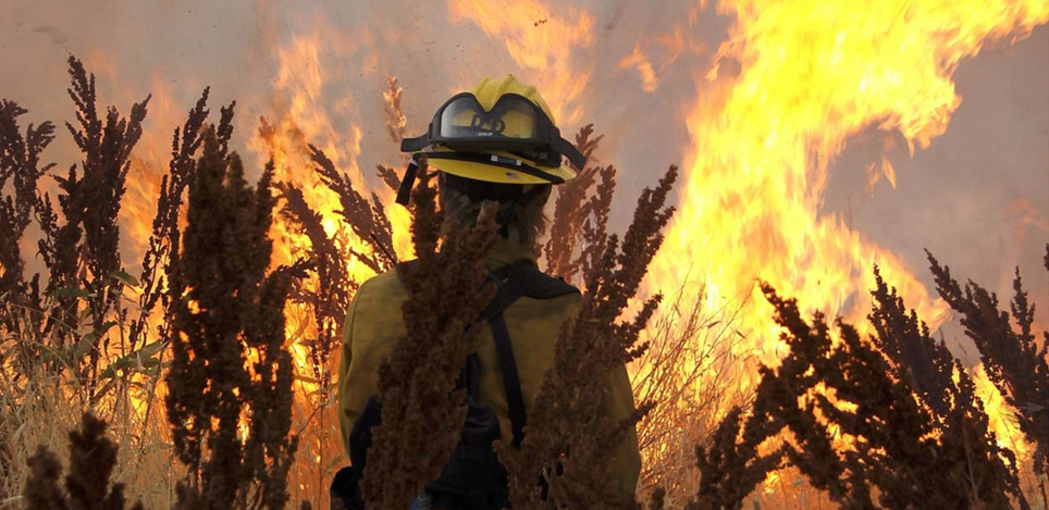 Photo by: Cary Ulrich (Nahahum Canyon Fire - July 2010)