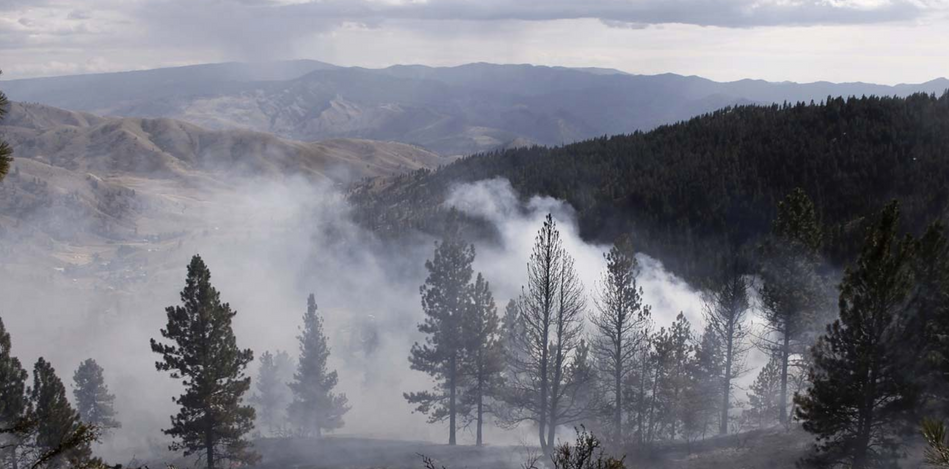 Photo by: Cary Ulrich (Nahahum Canyon Fire - August 2009)