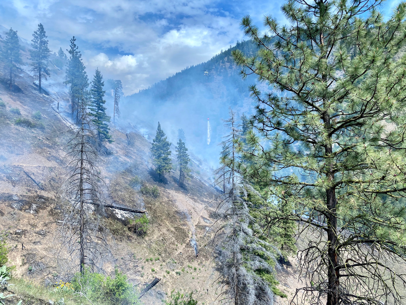 (Hay Canyon Fire - May 2020)