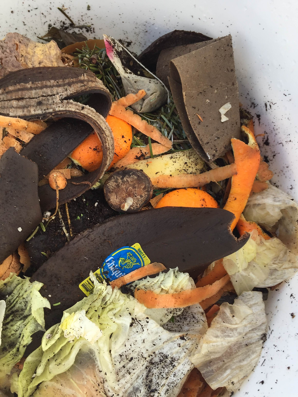 Compostable food waste, including a banana peel with a non-compostable sticker