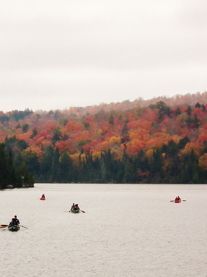 Autumn canoes on Source