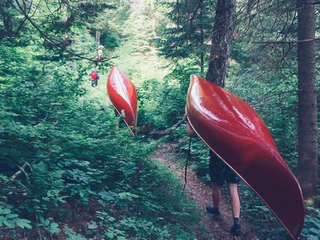 Red canoes, green trees