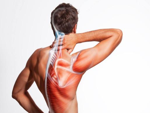 Boyun Fıtığı Belirtileri ve Tedavi Seçenekleri