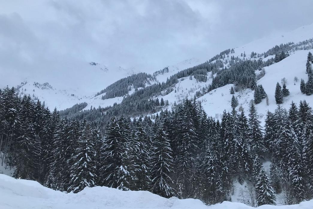 waldhof_winter_11.jpg