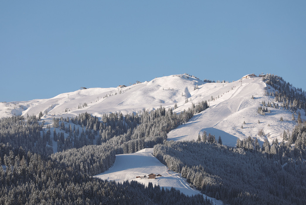 waldhof_winter_03.jpg