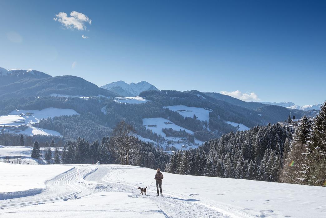 waldhof_winter_02.jpg