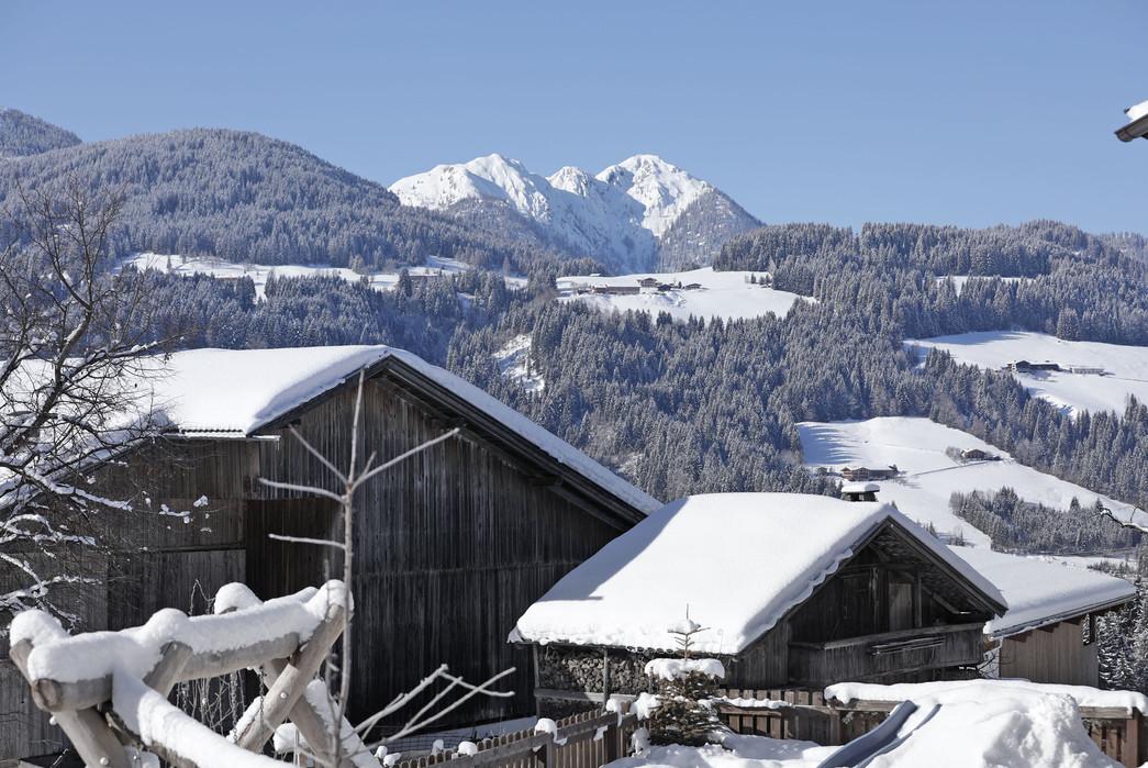 waldhof_winter_10.jpg