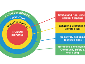 Council presented with Windsor-Essex Regional Community Safety and Well-Being Plan