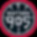 Raptors_905_logo.svg (1).png
